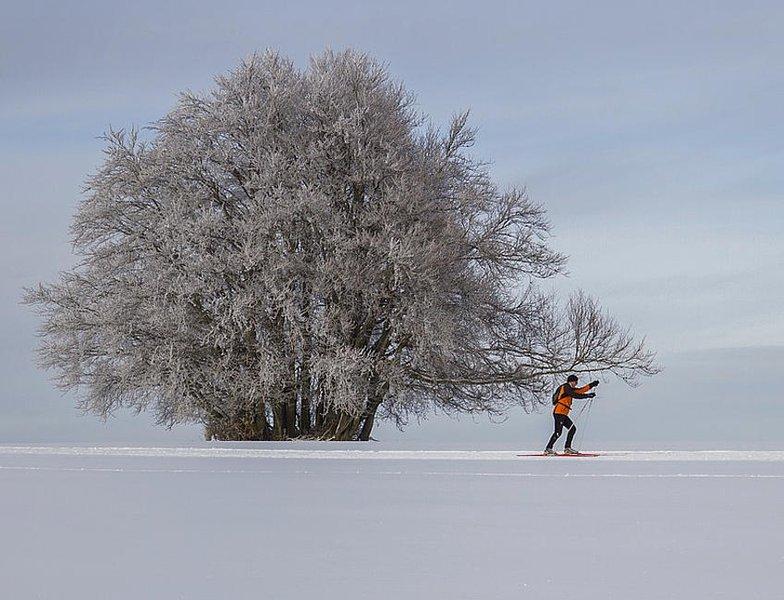 Hyvät sukset siivittävät hiihtoa.