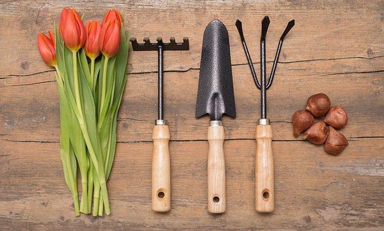 Puutarhan pientyökalut voivat olla kauniita ja ergonomisia.