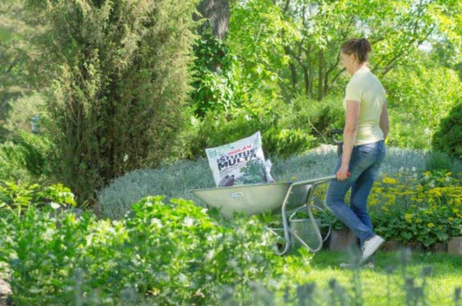 Vuoden puutarhatuotteeksi tänä vuonna valitussa Biolanin Istutusmullassa hyödynnetään biohiiltä ja mykorritsaa. Mykorritsa on kasvin juuren ja sienen muodostama symbioosi, josta molemmat hyötyvät. Biohiili pystyy sitomaan vettä itseensä ja luovuttamaan sitä hitaasti kasvien käyttöön.