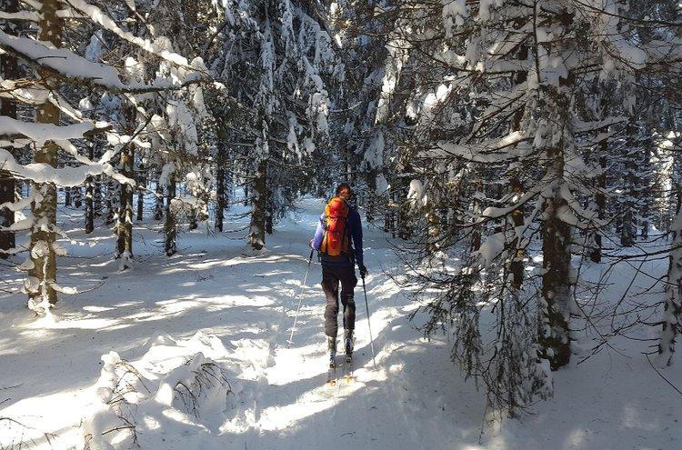 Hiihtää voi melkein missä vain, kunhan alustana on lunta. Hiihtosukset ladulle ja ladun ulkopuolelle löydät Kärkkäiseltä!